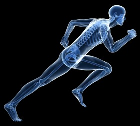 Sports Injury Prevention Tips